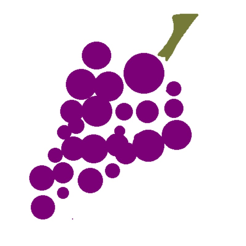 Grape digital webinar design