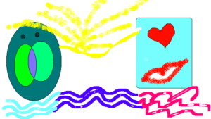 Les valeurs du Cabinet Belpaeme vues par Hyacinthe