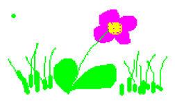 Une fleur pour représenter un métier en lien avec la nature